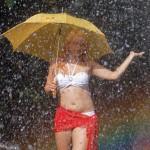 im Regenbogen