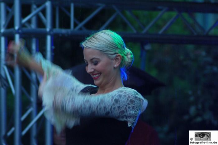 Flamenco im Regen 2
