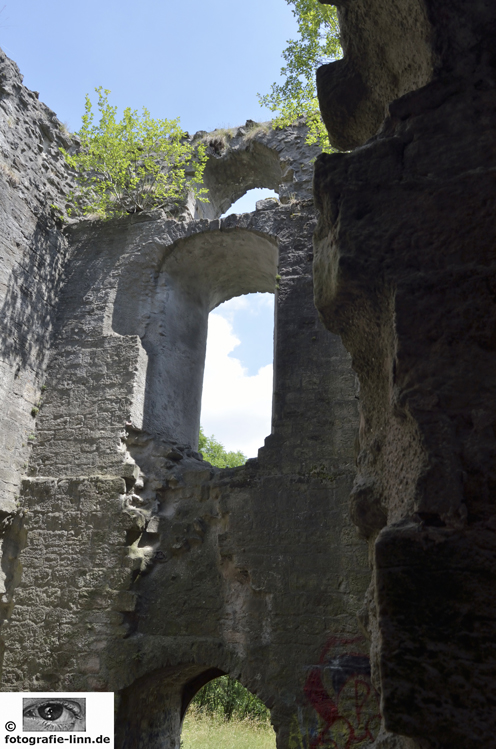 Burgruine Helfenberg 2
