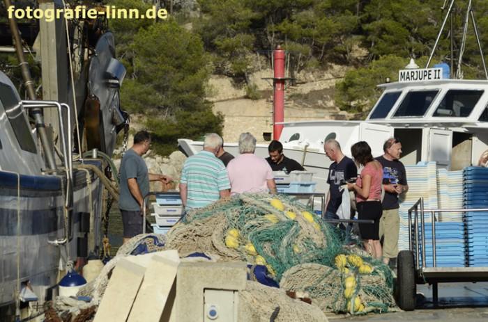 Fischverkauf im Hafen