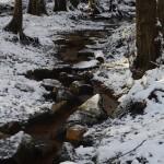 Königsbrünnchen im Winter