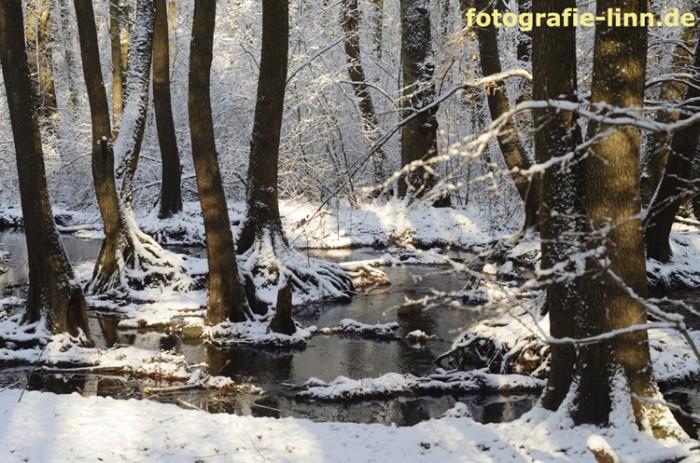 Königsbrünnchen im Schnee