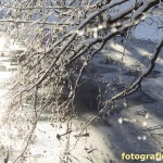 Eis auf dem Jacobiweiher