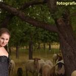 Model vor Schafherde