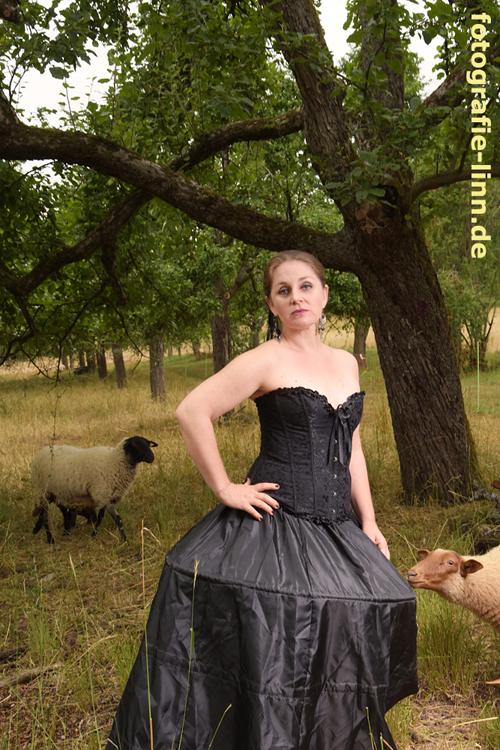 stolzes schwarzes Schaf