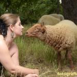 mit dem Schaf auf du und du