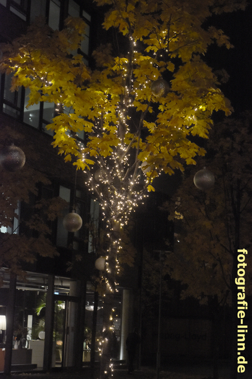 Leuchtbaum