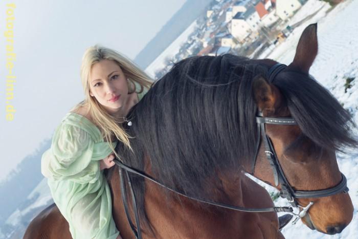 Blick vom Pferd in die Kamera