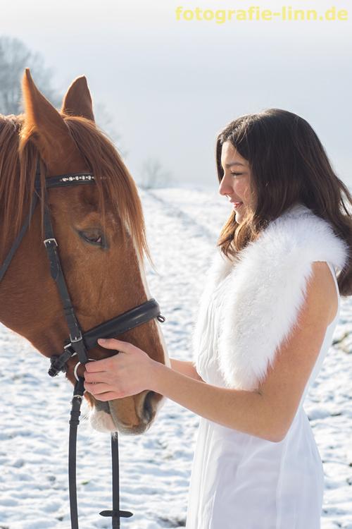 Beziehung Mensch ujd Pferd