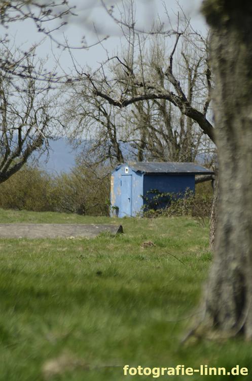 Das blaue Haus 2