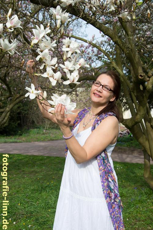 weiße Magnolien
