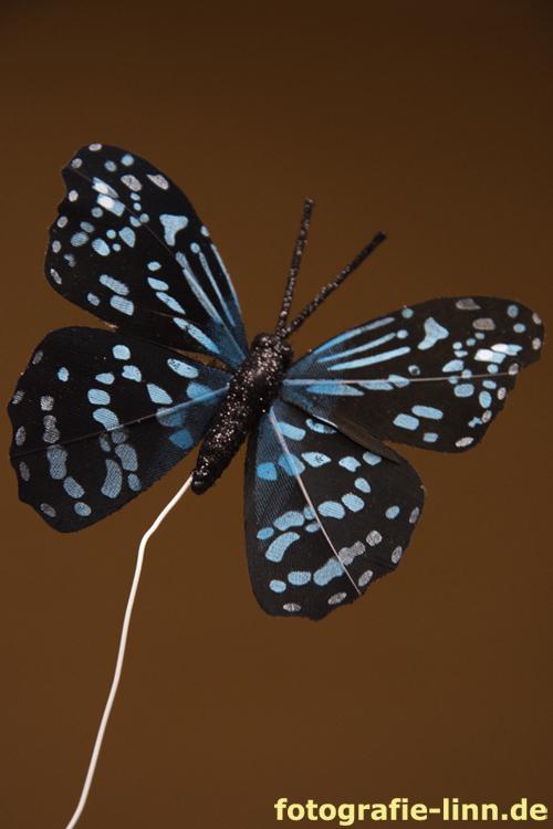 Deko-Schmetterling schwarz-blau