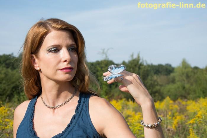 der blaue Schmetterling