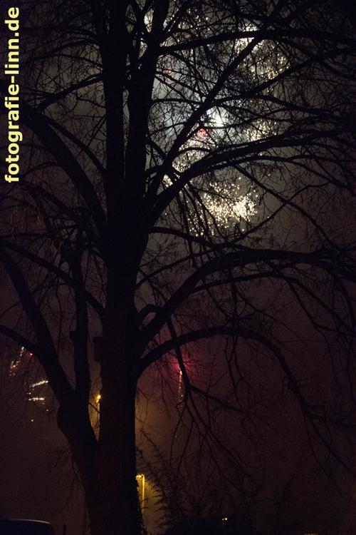 erleuchteter Baum