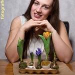 Blumen in Eierkarton