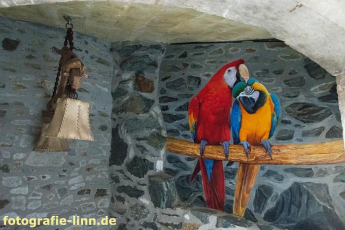 Papageien-Wandgemälde