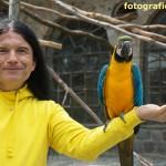 Mann mit Papagei