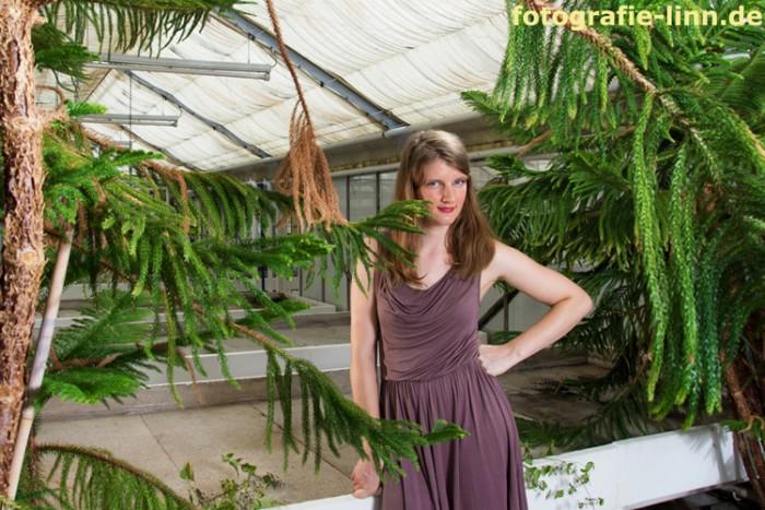 Model hinter Araukarien