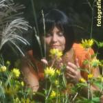 Der Duft der Blumen