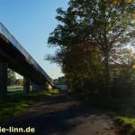 Brücke, Bäume, Sonnenlicht